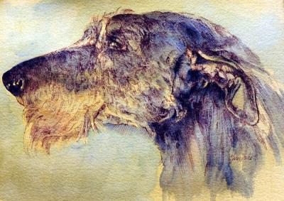 Hickory - Profile Study by Chris Duke