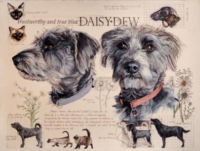 Daisy Dew by Chris Duke