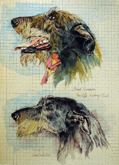 Hickory - Two Studies by Chris Duke