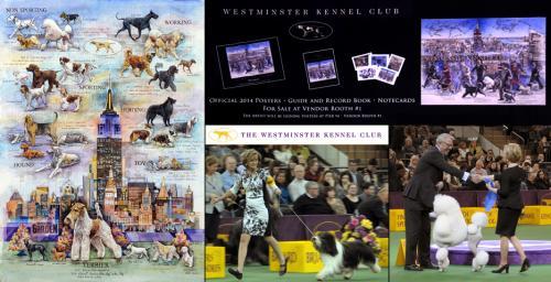 2015 Westminster Dog Show - Chris Duke